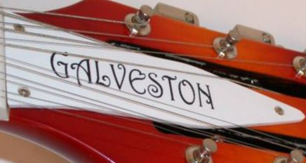 Galveston truss rod cover