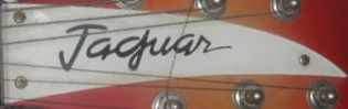 jaguar truss rod cover