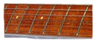 Rickenbacker fret board